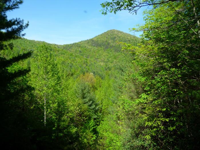 Pinnacle Mt SC