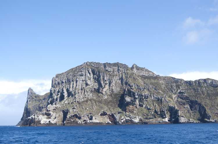 Antipodes islands 4