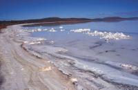 Lake Torrens 3