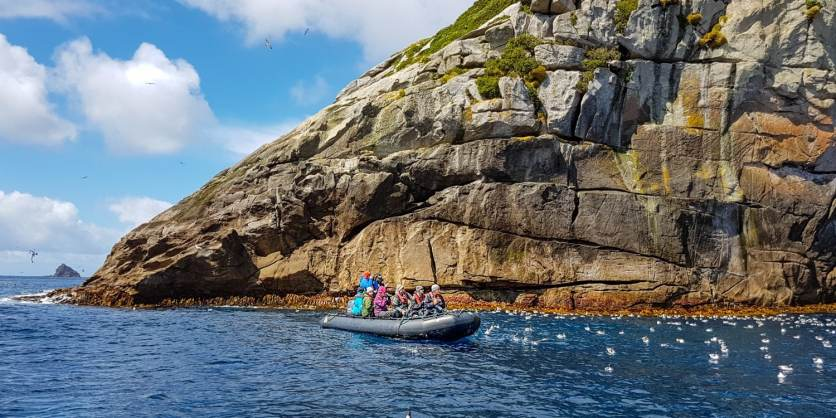 Snares Islands 1