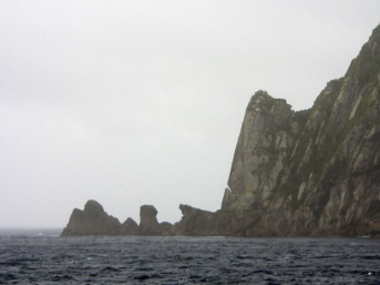 Snares Islands 2