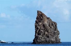 Guadalupe Island 1