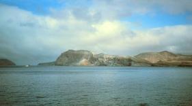 Guadalupe Island 2