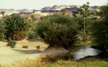 Bilma, Niger 2