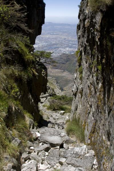 Cape Town - Table Mountain Platteklip Gorge