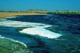 Chad - Lake Chad 1