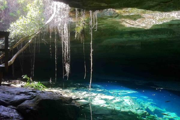 Grand Bahama - Lucayan National Park