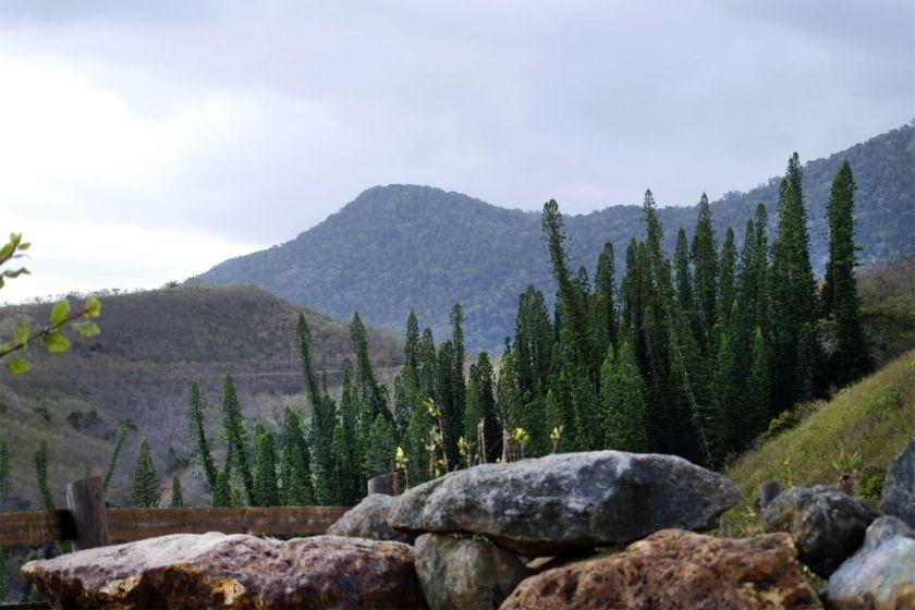 New Caledonia - Grande Terre 2