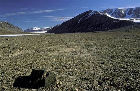 Greenland Peary Land northernmost tundra