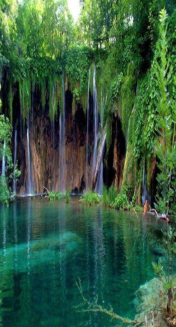Maui - Garajonay National Park Canary Islands