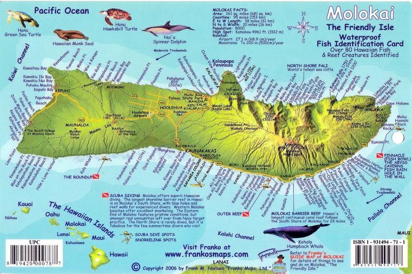 Molokai fish map