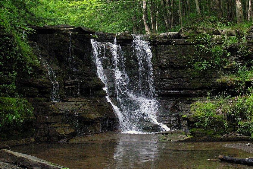 Twin Falls Seneca NY